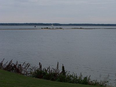"""View of the Choptank """"River""""."""
