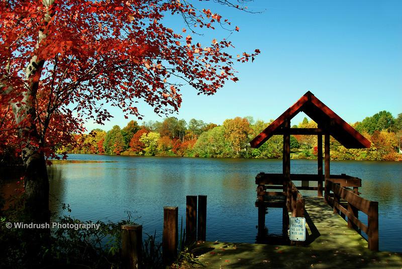 Autumn Colours, Wilde Lake, Columbia