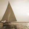 Skipjack sailboat sailing on the Chesapeake bay