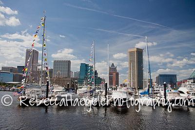 Baltimore-1234