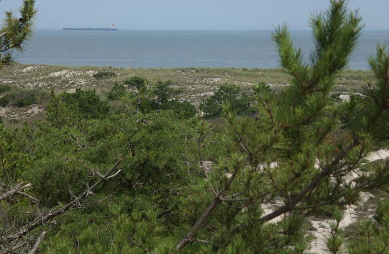 Cape Henlopen, from Herring Point