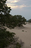 The Great Dune in evening, Cape Henlopen