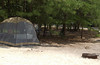 Our campsite at Cape Henlopen State Park