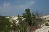 Cape Henlopen, looking N. from beach ramp