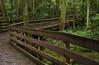 Walking/ Biking trail through Trap Pond S.P.