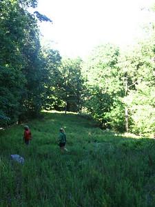 A hike.