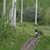 Riding the #7 trail loop in the Gooseberry trail system.  Conditions were damp with periods of light rain.