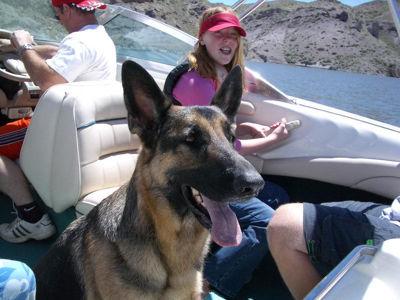 My dog and kids on Piaute lake