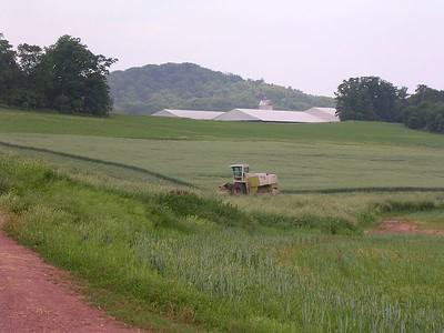 Mason Dixon Farm