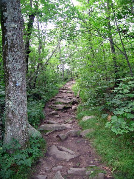 Wachusett Mountain, Massachusetts, 7 Aug 2007