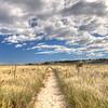 Trail on Crane beach, Massachusetts, USA