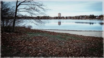 20151115.  Jamaica Pond, Boston MA.
