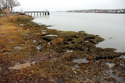 Merrimack River along Ring's Island