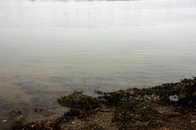Merrimack River at Low Tide