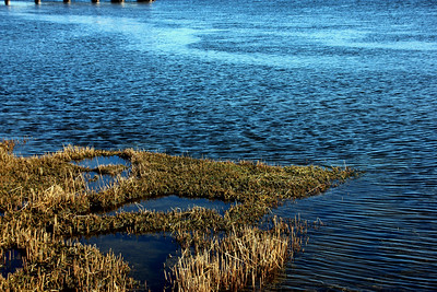 Merrimack River - Tide is rolling in