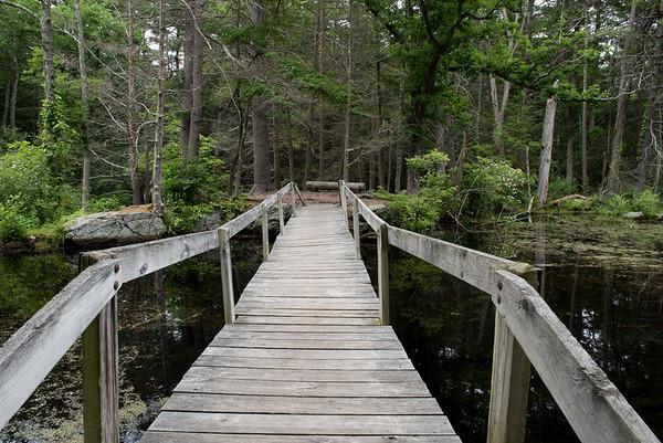 Mass Audubon - Broadmoor - Natick MA
