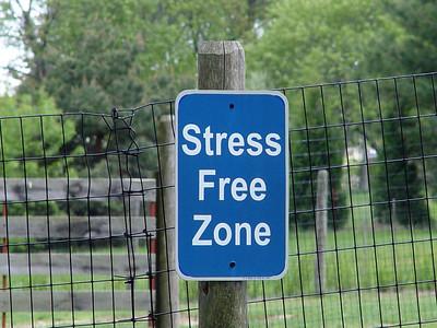 Stress Free Zone - Newbury