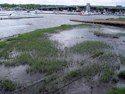 Ring's Island Marina - Salisbury