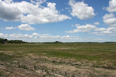 Great Marsh - Ipswich