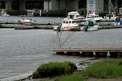 Ring's Island Marina