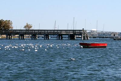 View from Ring's Island Marina - Salisbury, MA