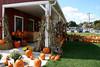 Connors Farm - Newbury, MA  (September 28, 2007)
