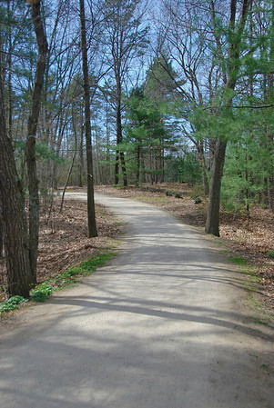 A Section of the Battle Road Trail at Minute Man NHP