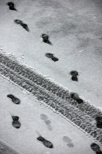 Who's Footprints are Those???