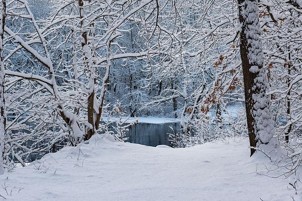 Snowscapes-18-Feb-2018-Billerica