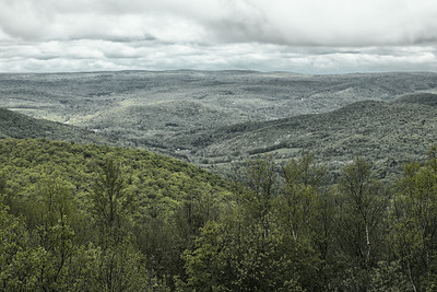 View from Route 2 in Taconic Trail State Forest at NY-MA border.
