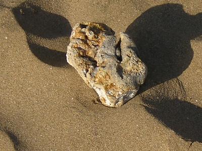 Maui 2005 029