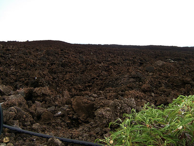 Lava fields in Makena.
