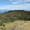Tuesday we headed up to the Haleakala volcano summit. There is a small campground in this grove. You can see that we are well above the clouds.