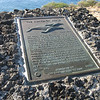 Plaque about the Humpback whales.