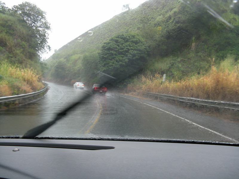 Heading to Hana, we hit the wet side of the island. It rained most of the way over to Hana.