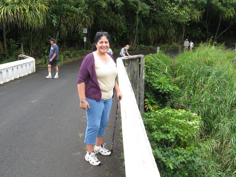 Christine on the Oheo bridge.