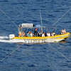 Visitors aboard a boat for whale watching expedition in Maui, Hawaii.