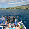A group of visitors on whale watching expedition in Maui, Hawaii.