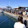 Visitors boarding a boat for whale watching expedition in Maui, Hawaii.