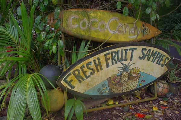 Maui, Kauai Hawaii