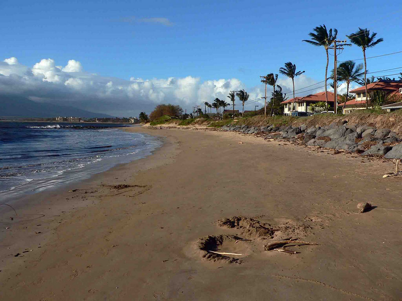 Beach across the street from Maui Sunseeker. The debris is not normally there, it was left from teh storm the week before.