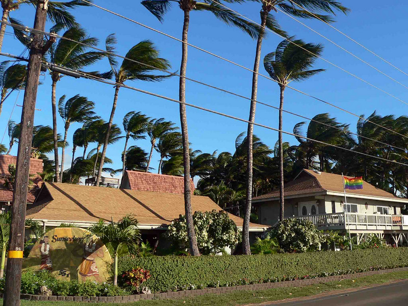 Maui Sunseeker