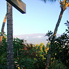 Maui 020