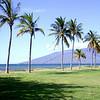Maui 015
