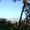 Maui 021