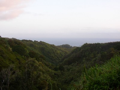 View of the Pacific Ocean along the Hana Hwy.  This would be somewhere between Kuau and Ho'okipa Beach (on the north side of the island).