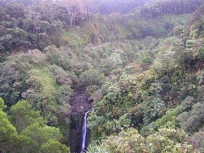 The top of Lower Puohokamoa Falls with the Hana Hwy. visible behind it.