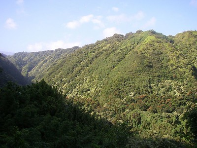 Honomanu Valley