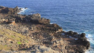 Maui Blowhole and Whale Breach