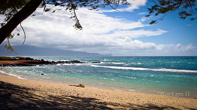 Windy Baby Beach